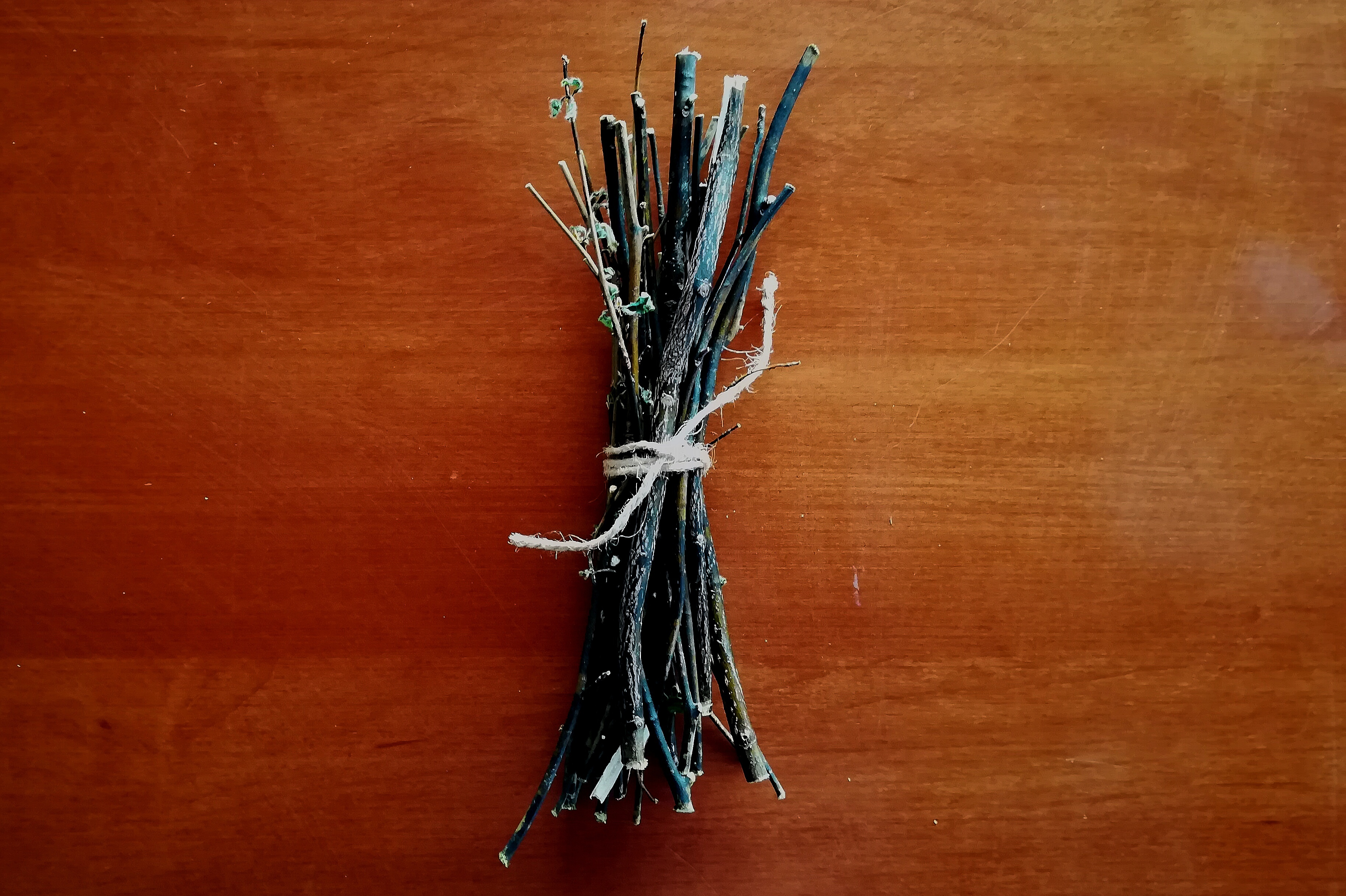 クロモジ枝を「○○」にする会【予告】