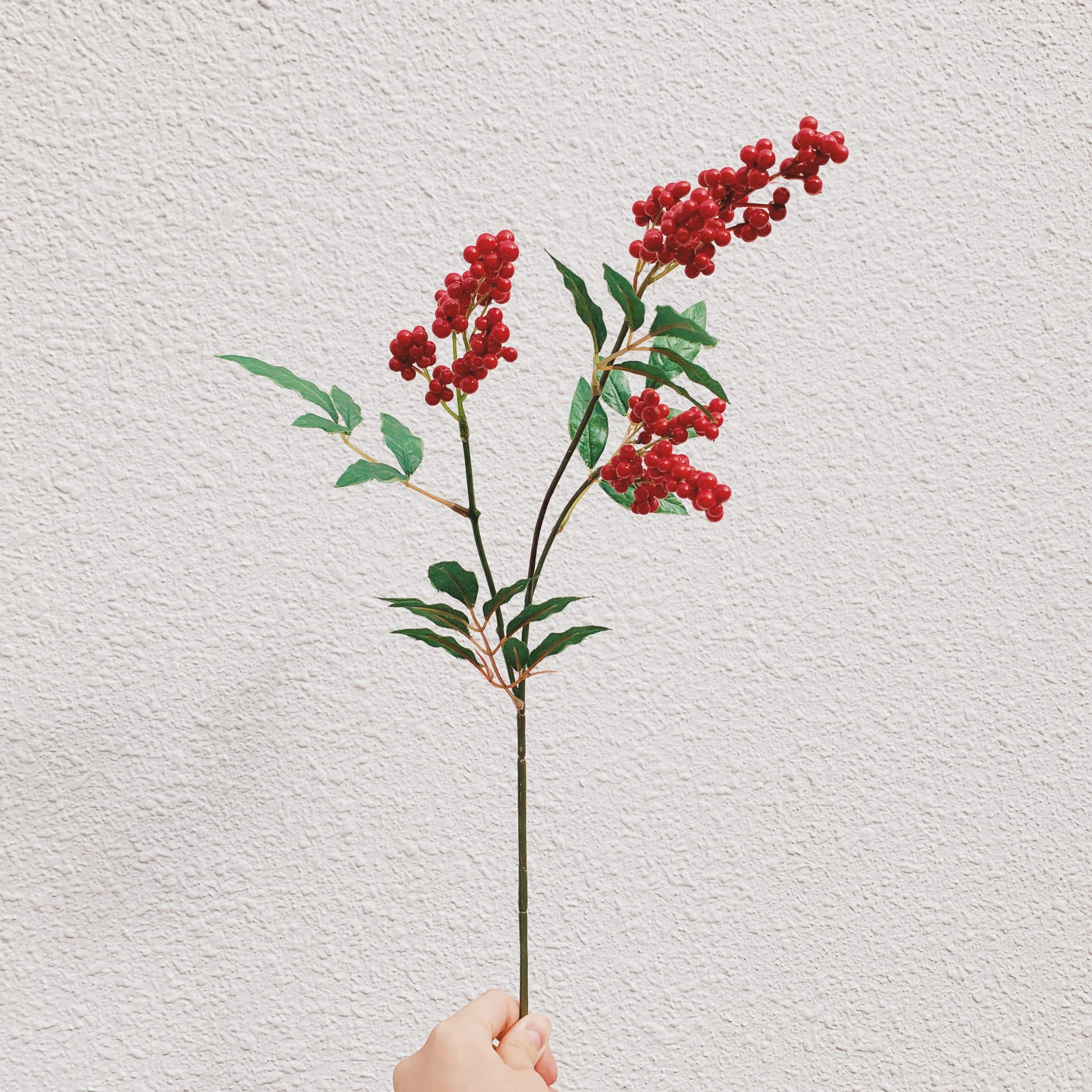 mini flower/南天