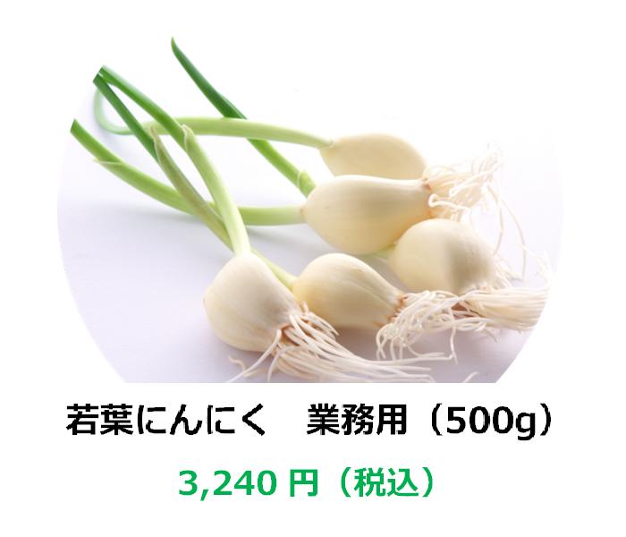 【埼玉県産】若葉にんにく 業務用(500g)