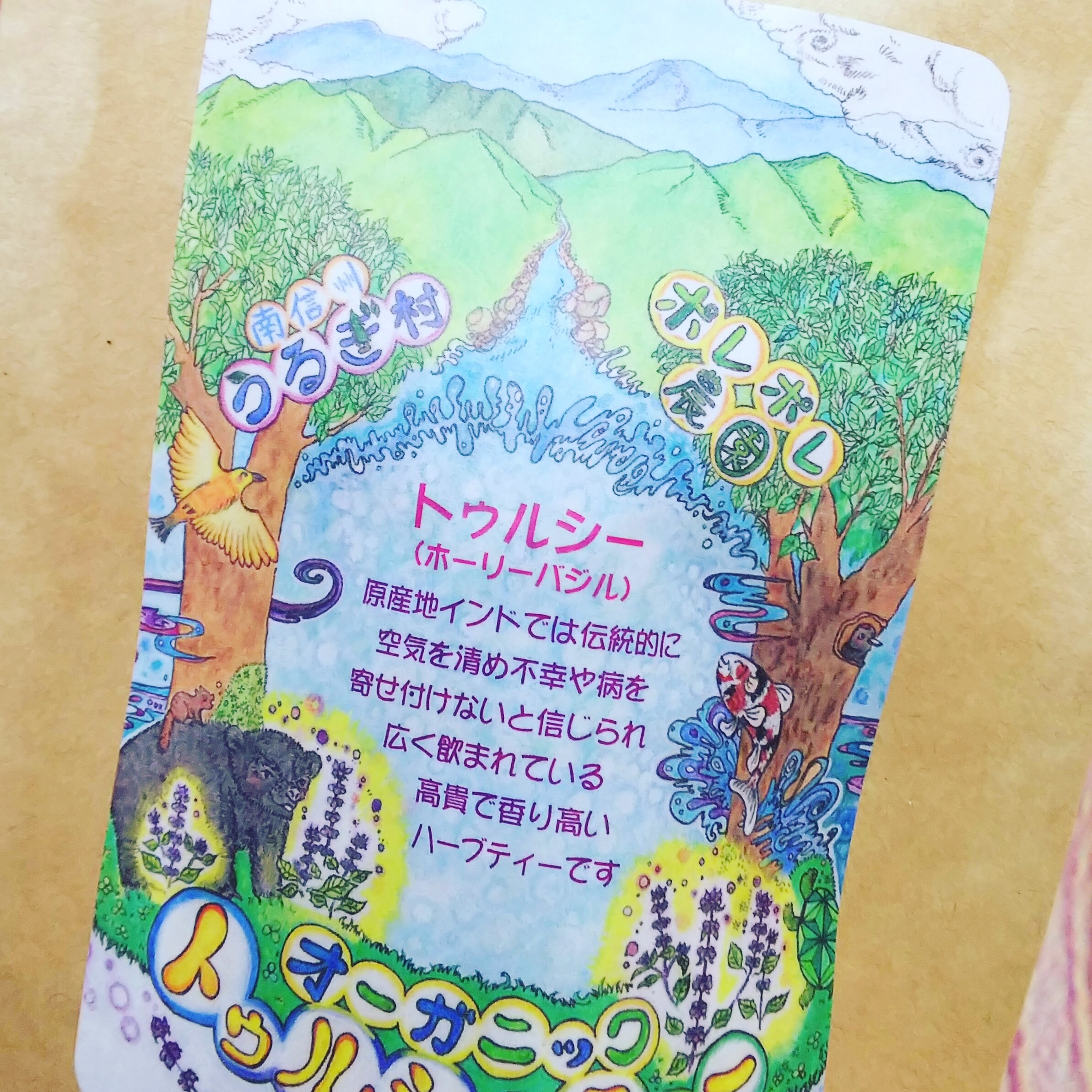 長野県売木村産【無科学肥料、無農薬栽培】トゥルシー