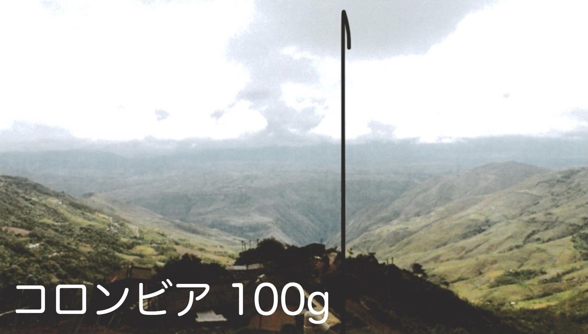 コロンビア エル・イゲロン 中煎り 100g