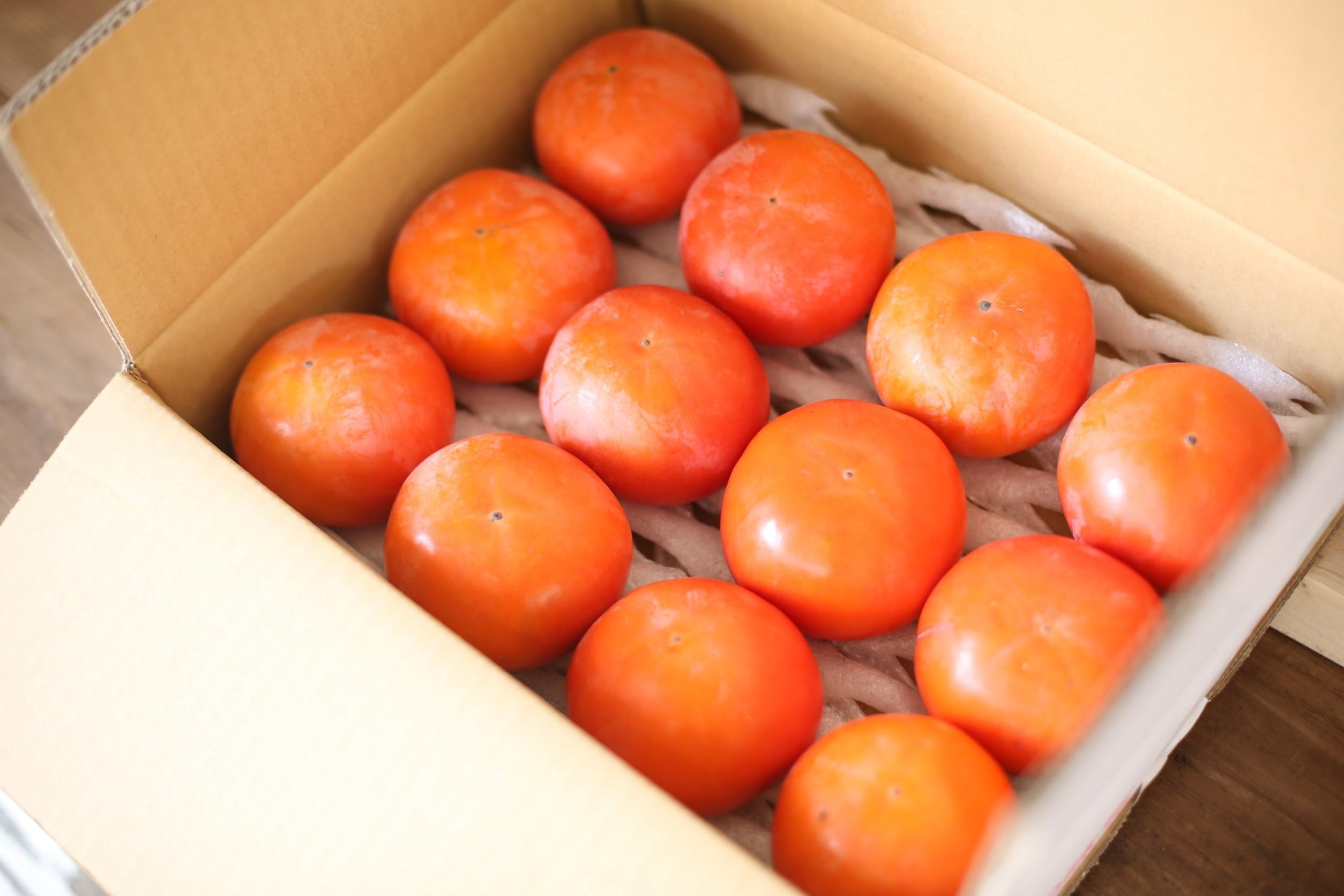 富有柿 厳選2L 12玉