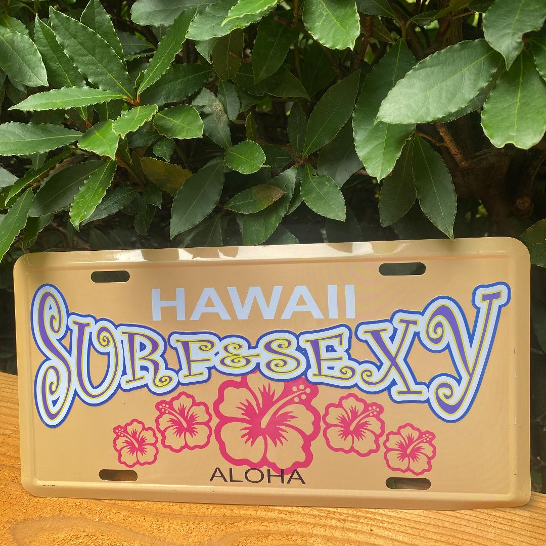 フランジパニ ハワイアン雑貨 ブリキ 看板 ワイキキビーチ アメリカン雑貨