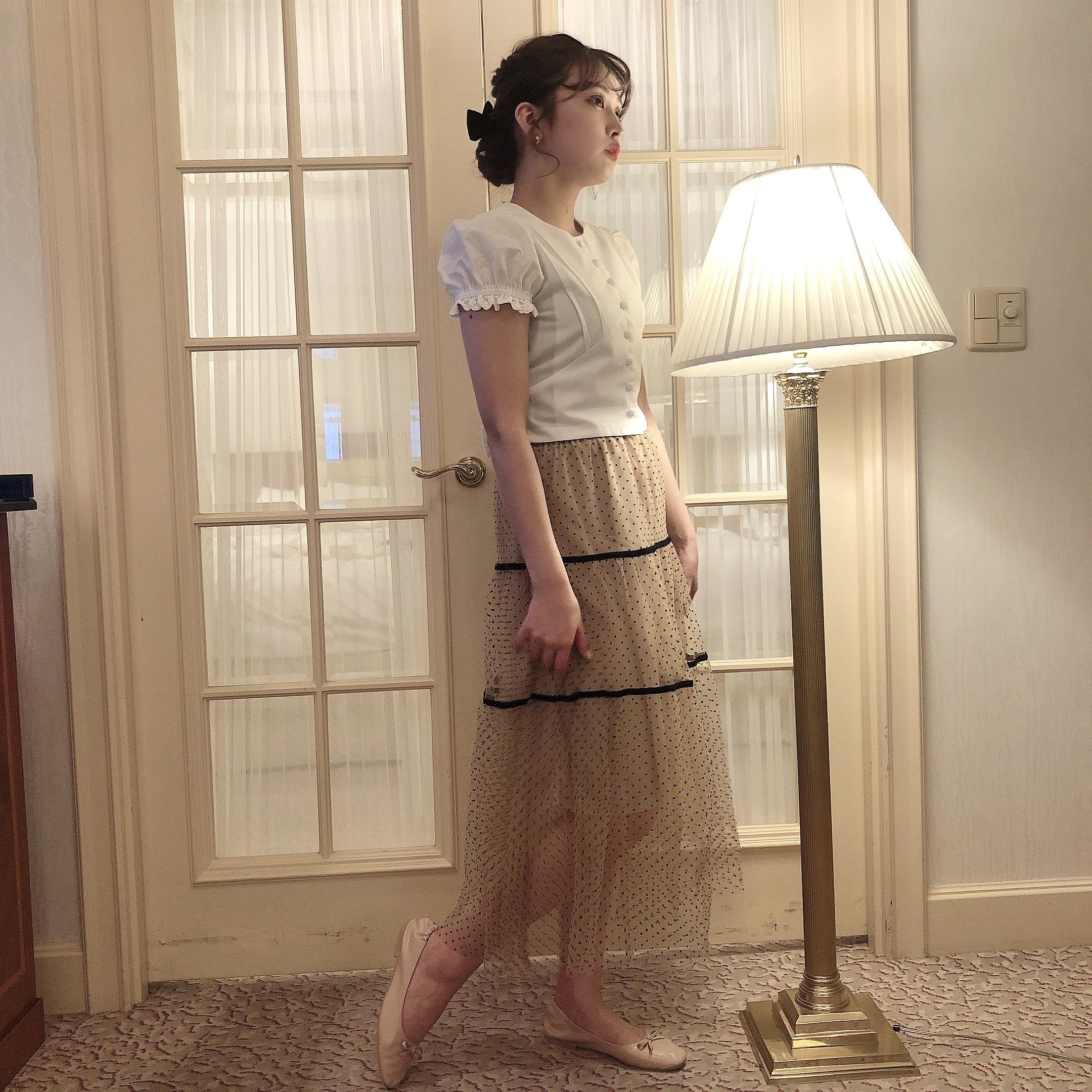 line dot tulle skirt