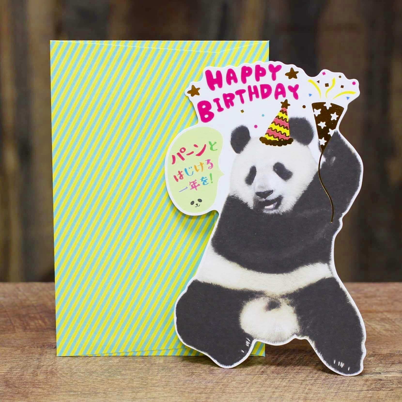 パンダ/メッセージカード/誕生日カード/web限定価格  浜松雑貨屋 C0pernicus  便箋・封筒レターセット