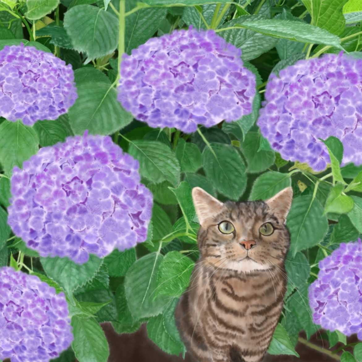 絵画 インテリア アートパネル 雑貨 壁掛け 置物 おしゃれ 猫 動物 デジタルアート 紫陽花 ロココロ 画家 : rune 作品 : 紫陽花の下で