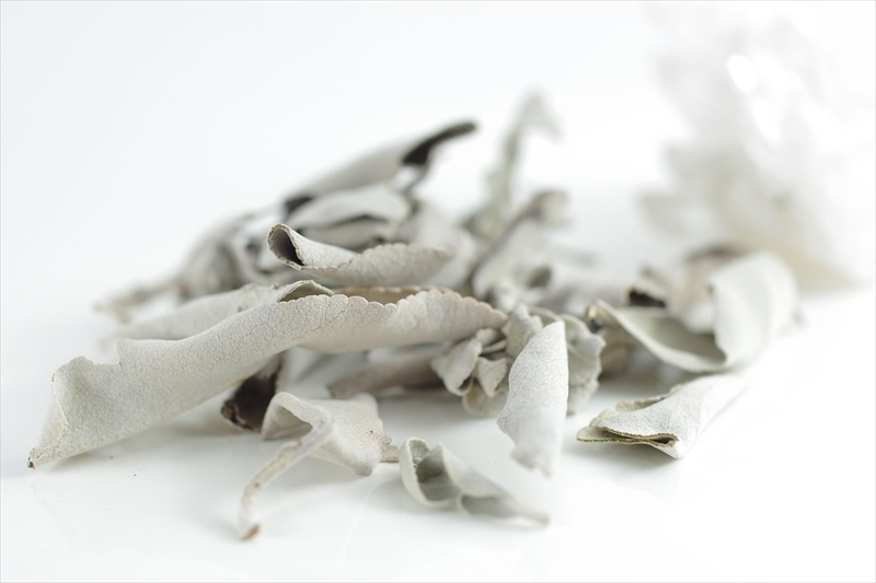 浄化用ホワイトセージ5g - 画像1