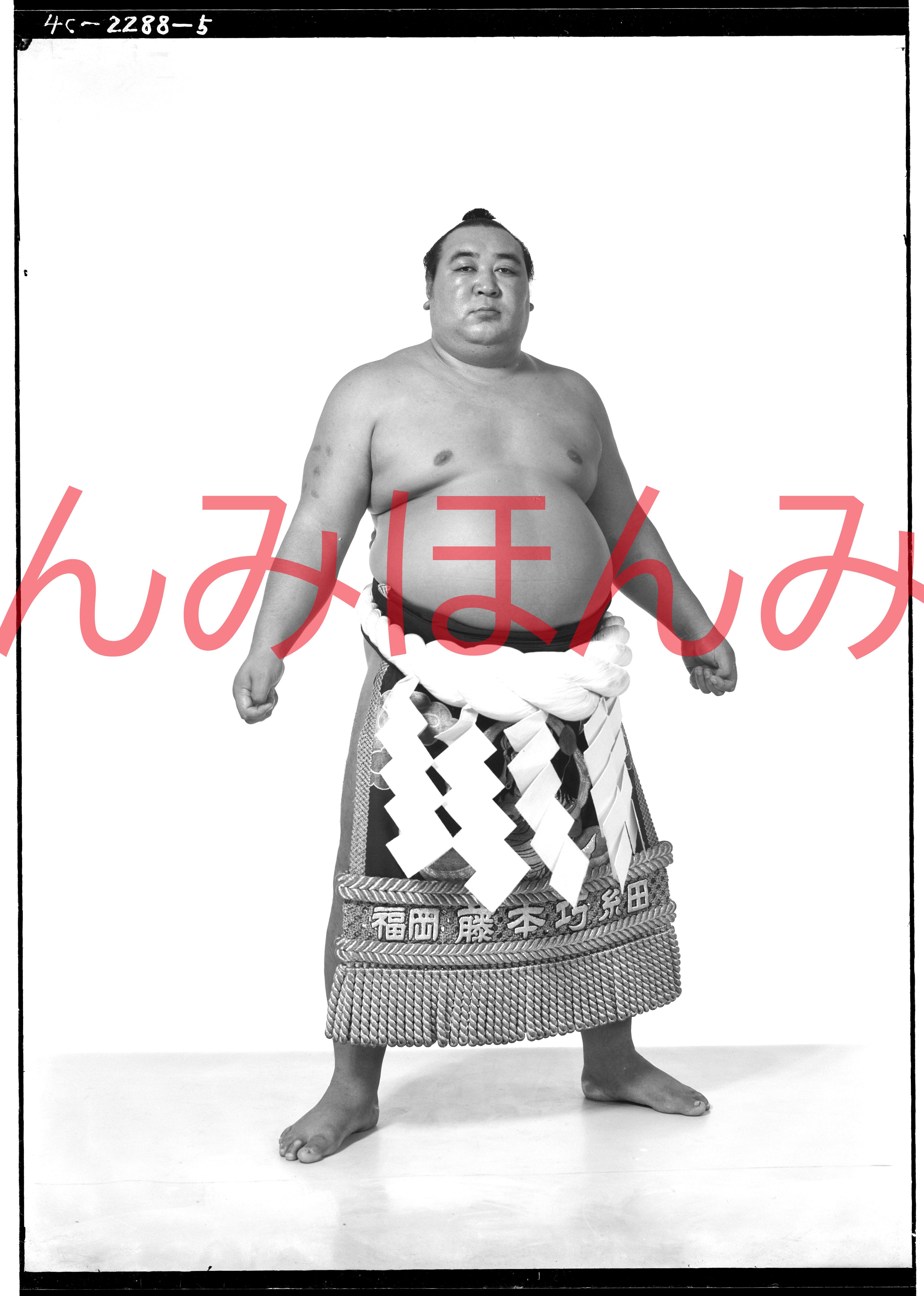 昭和31年秋場所優勝 横綱 鏡里喜代治関(4回目の優勝)