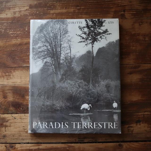 COLETTE et IZIS: PARADIS TERRESTRE /  IZISイジス