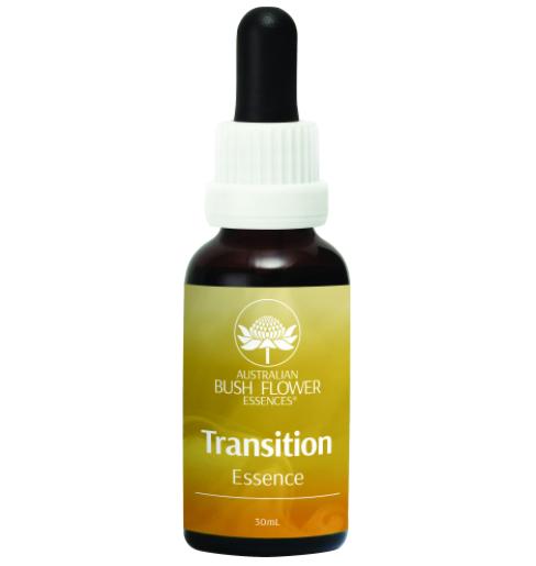 トランジション[Transition]『変化の時』