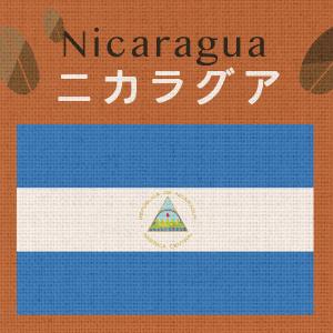 ニカラグア・マラカトゥーラ・ブエノスアイレス農園(大袋400g)