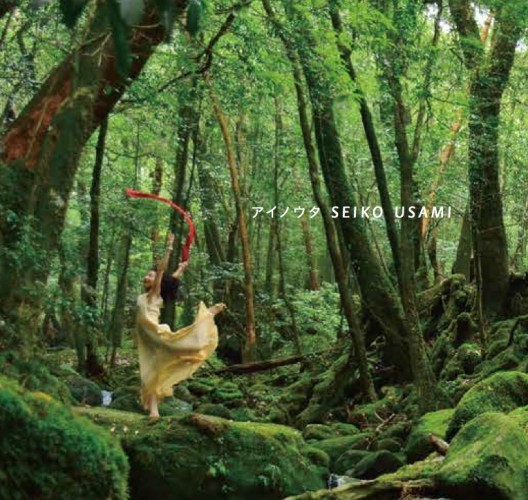 【水晶付き限定版】 「アイノウタ」CD + DVD