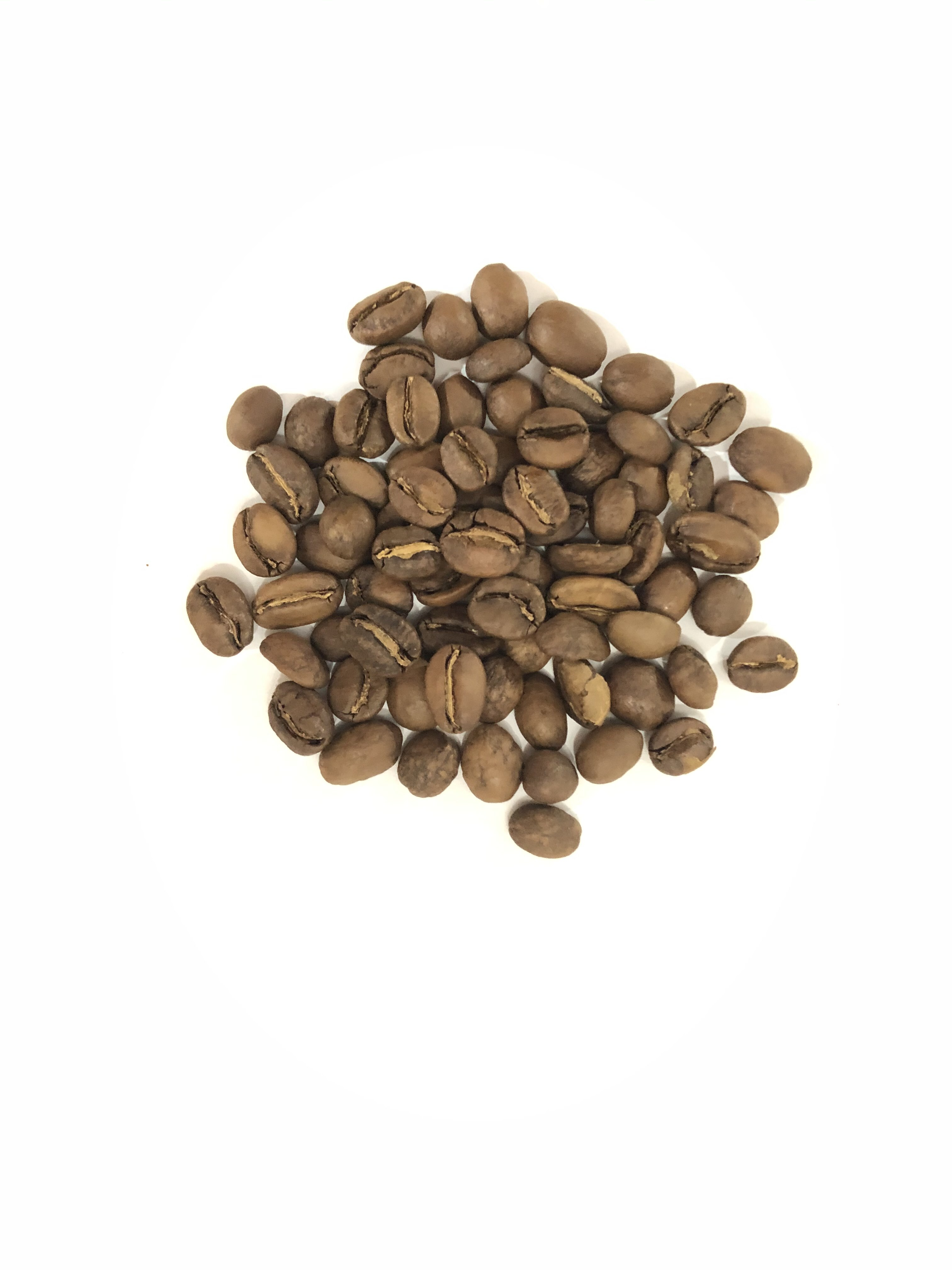 エチオピア イルガチェフェ コンガ農協(スペシャルティコーヒー)