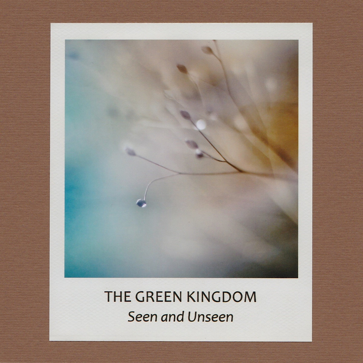 The Green Kingdom「Seen And Unseen」(sound in silence)