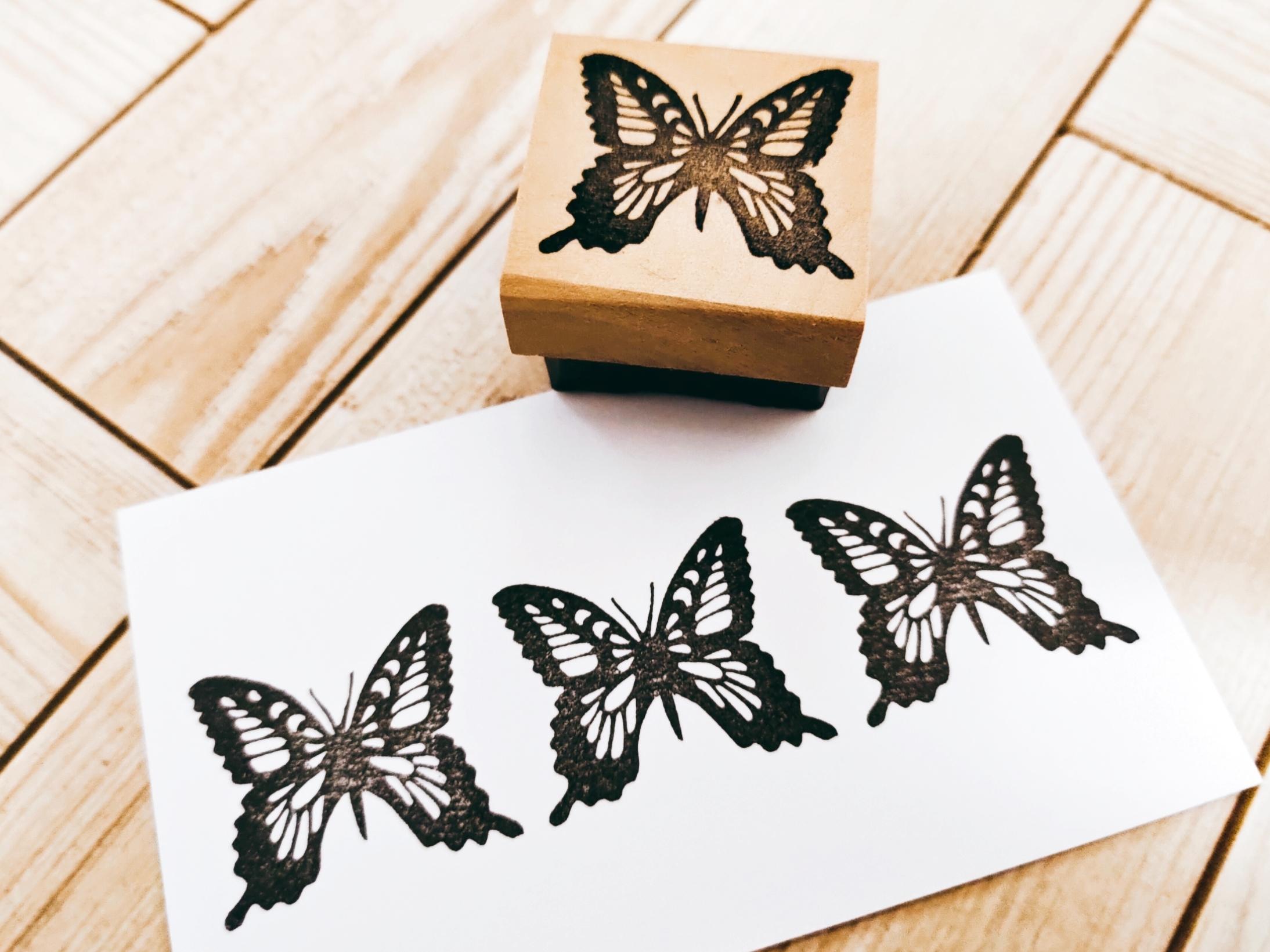 空想のなかの蝶々②
