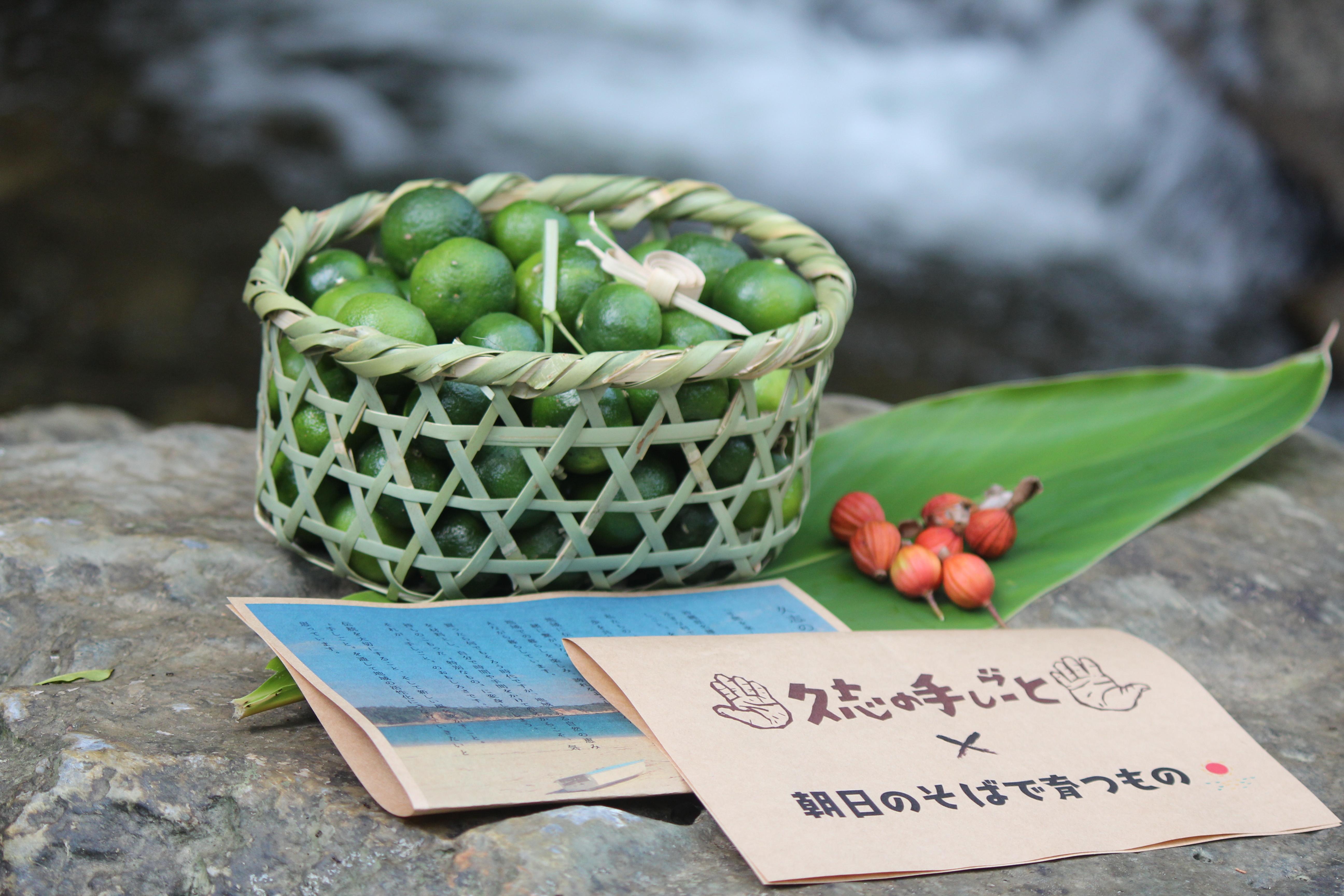 数量限定|10月18日(日)〆切り】竹かごとシークヮーサー(送料別全国 ...