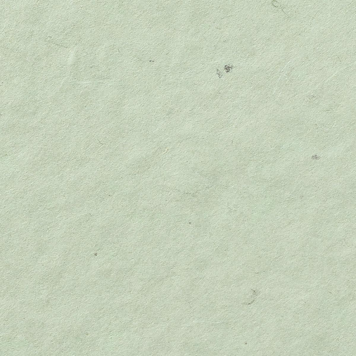 阿波 粕板紙 薄緑
