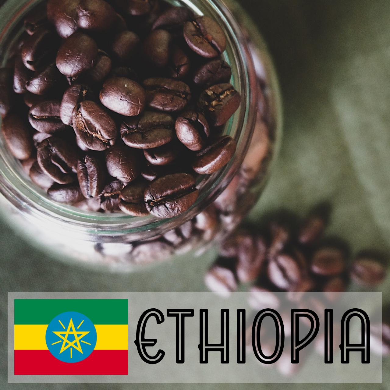 エチオピア  100g ー火ー