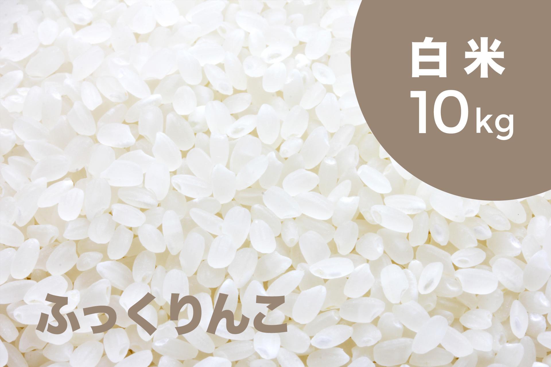 特別栽培米 ふっくりんこ(白米)10kg【令和2年産 】