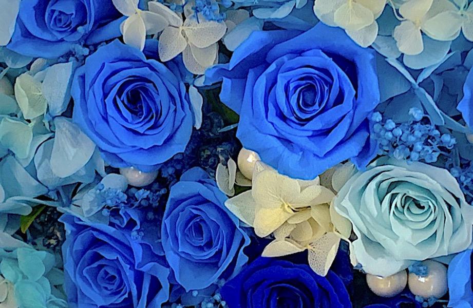 青いバラのプリザーブドフラワー 額縁(全国配送可)