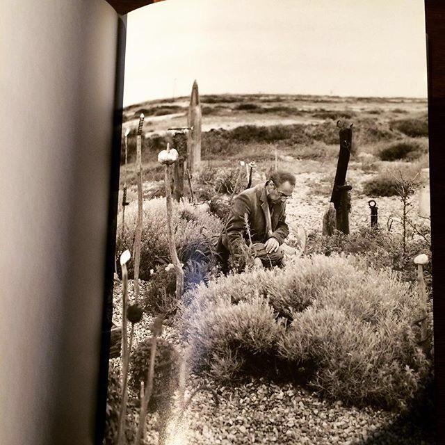 自然の本「Derek Jarman's Garden」 - 画像3