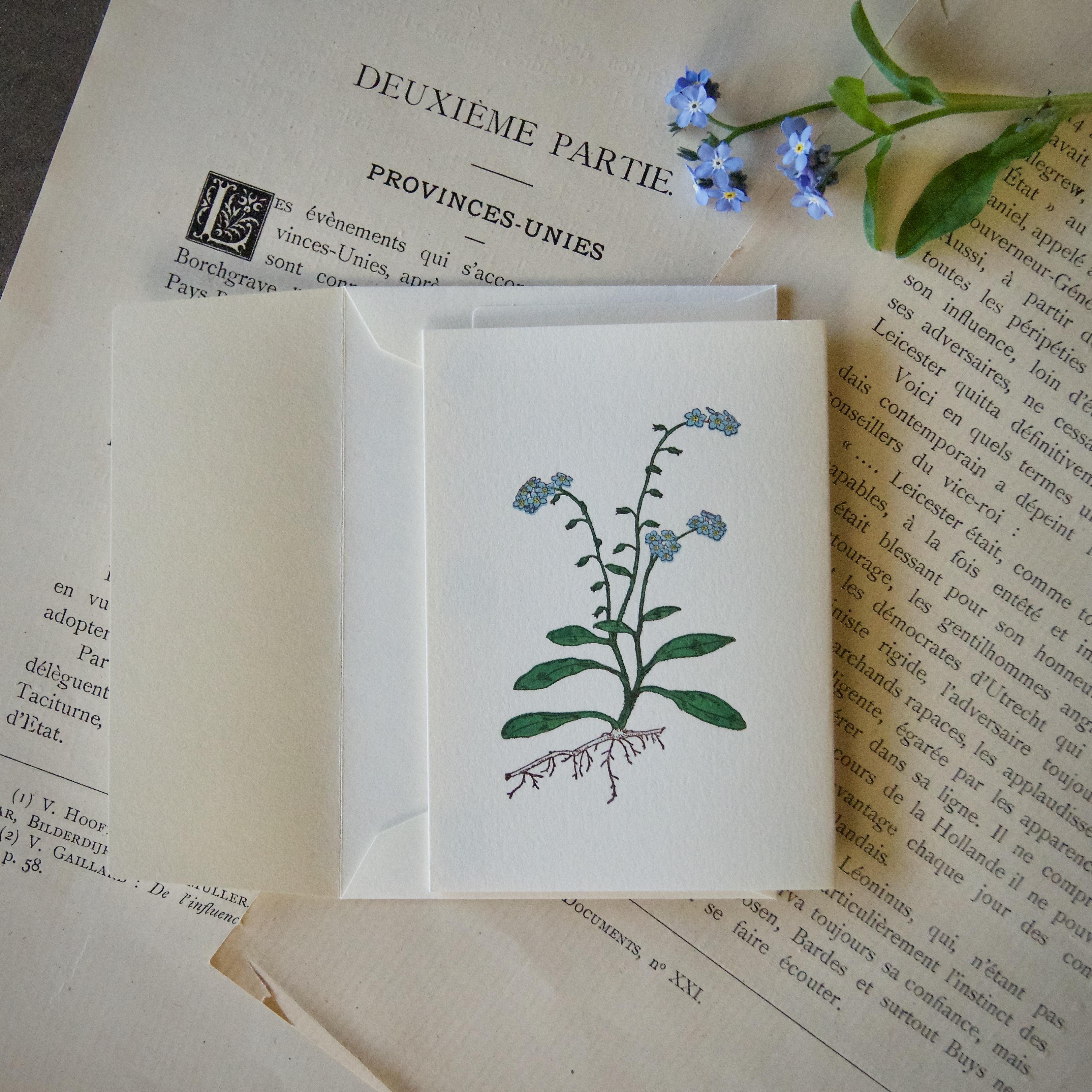 【カード 小】 ワスレナグサ / カード1枚+封筒1枚
