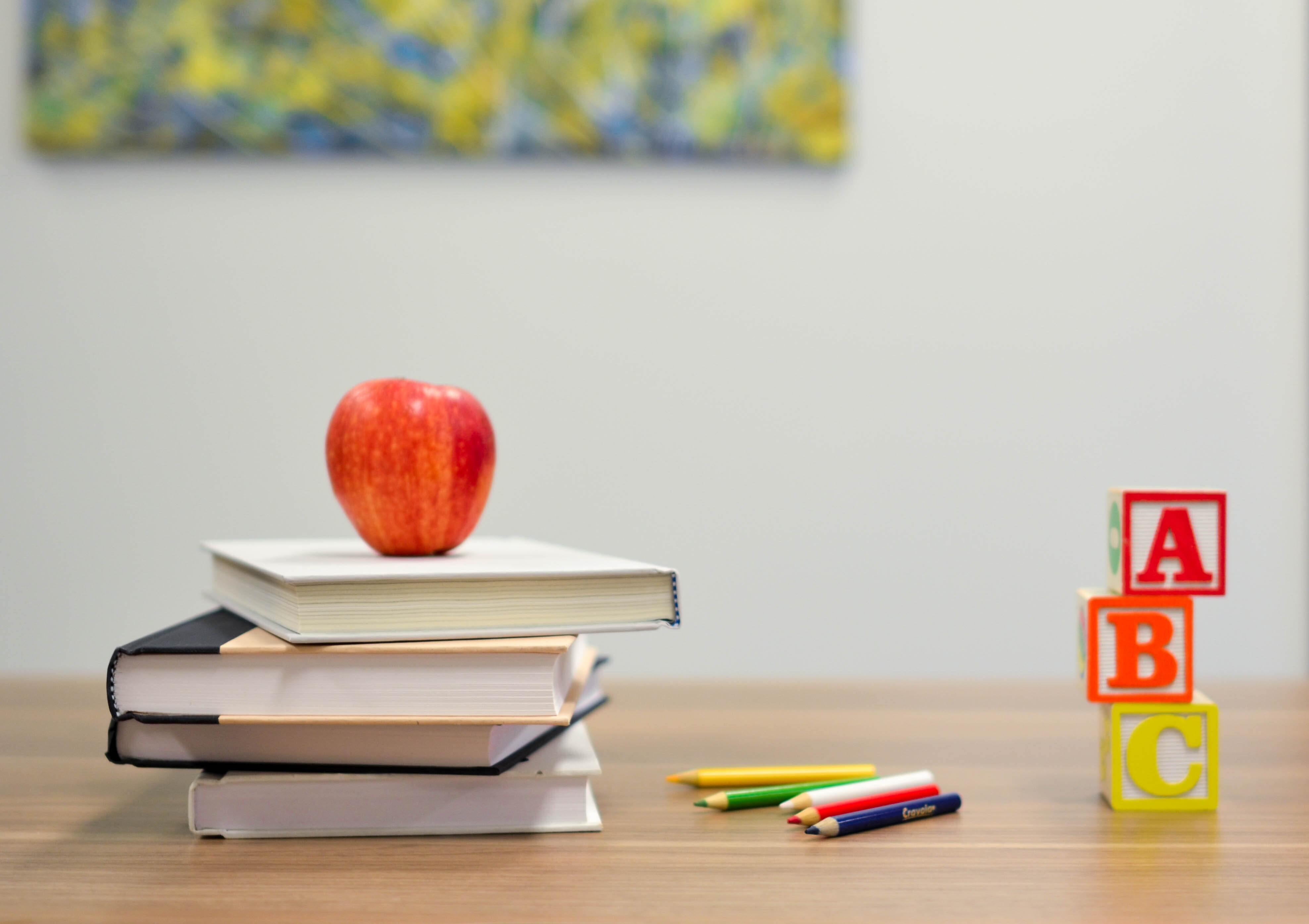 子どもさんが英語の宿題をしているときに、約30分間リモートで繋がります。