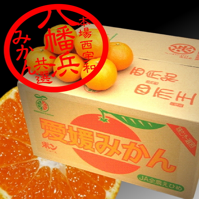 八幡浜共選「レギュラーみかん」 良品 10kg M,L