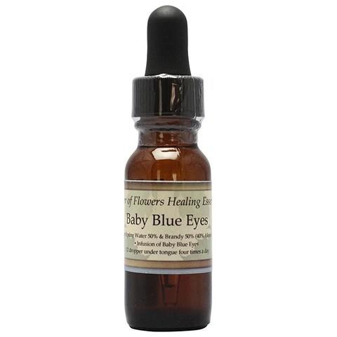 ベビーブルーアイズ[Baby Blue Eyes]