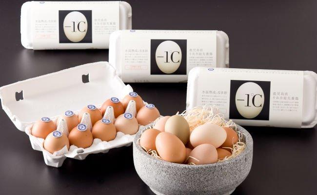氷温熟成なま卵『-1℃』(マイナス イチド シー)  10個/1パック【クール便】