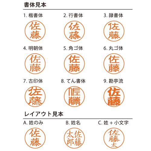 シャチハタネーム9(別注品)青鈍-あおにび-