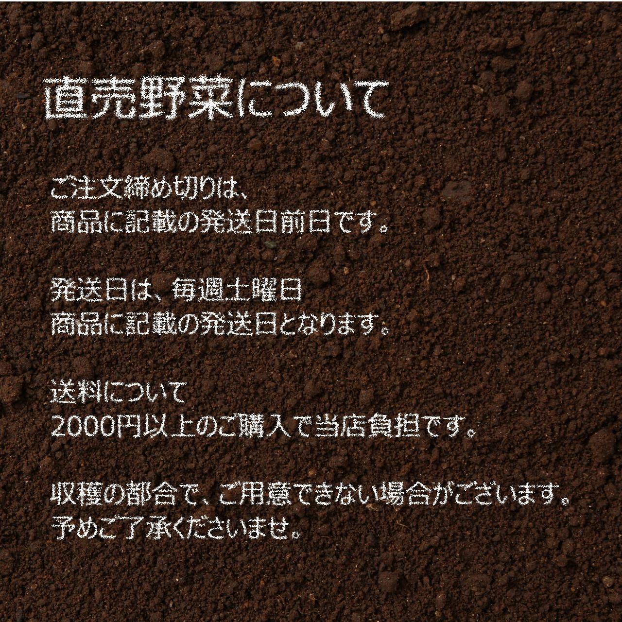 8月の新鮮な夏野菜 : ネギ 3~4本 8月の朝採り直売野菜 8月17日発送予定