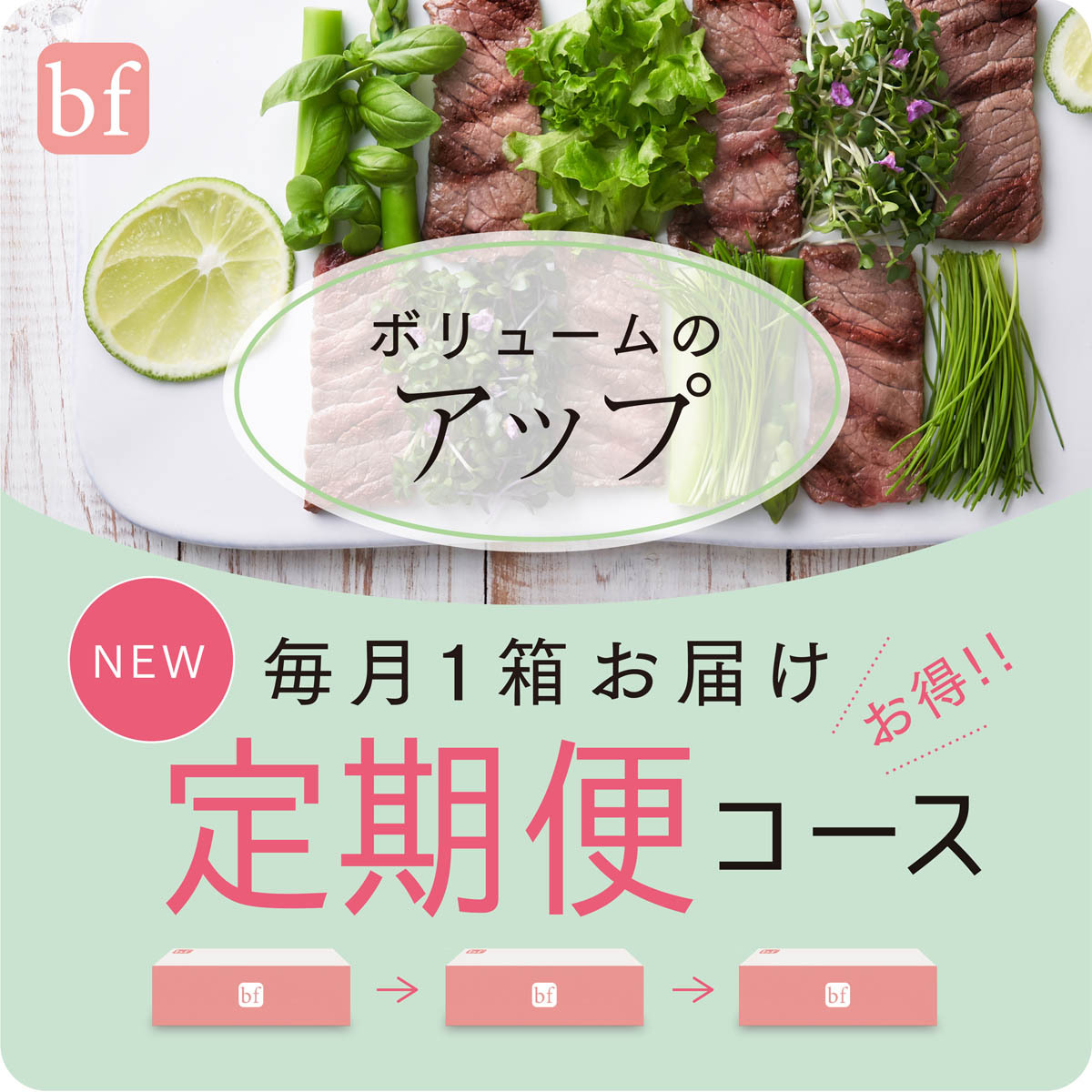 bf アップ【定期便】