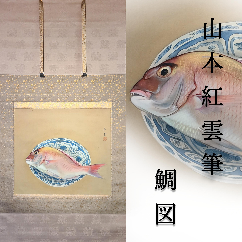 日本画 鯛図 山本紅雲 共箱 塗二重箱入 肉筆 真筆保証 京都 掛軸 茶掛
