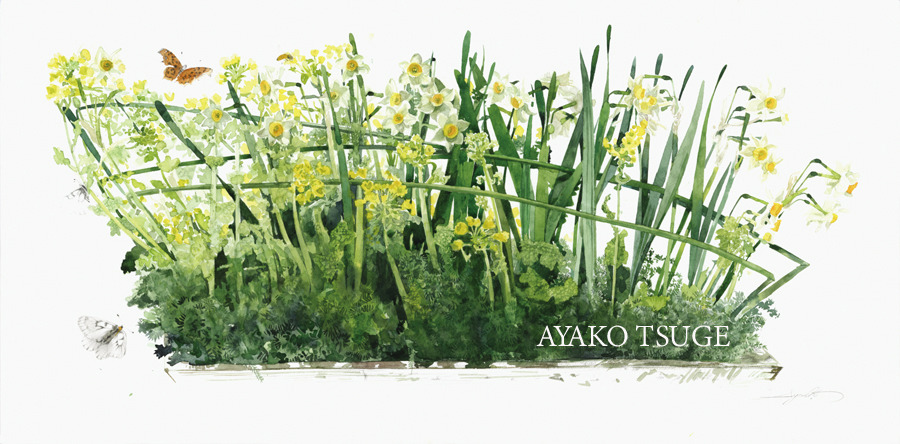 Pre-Ordar  四季折々の花の水彩画
