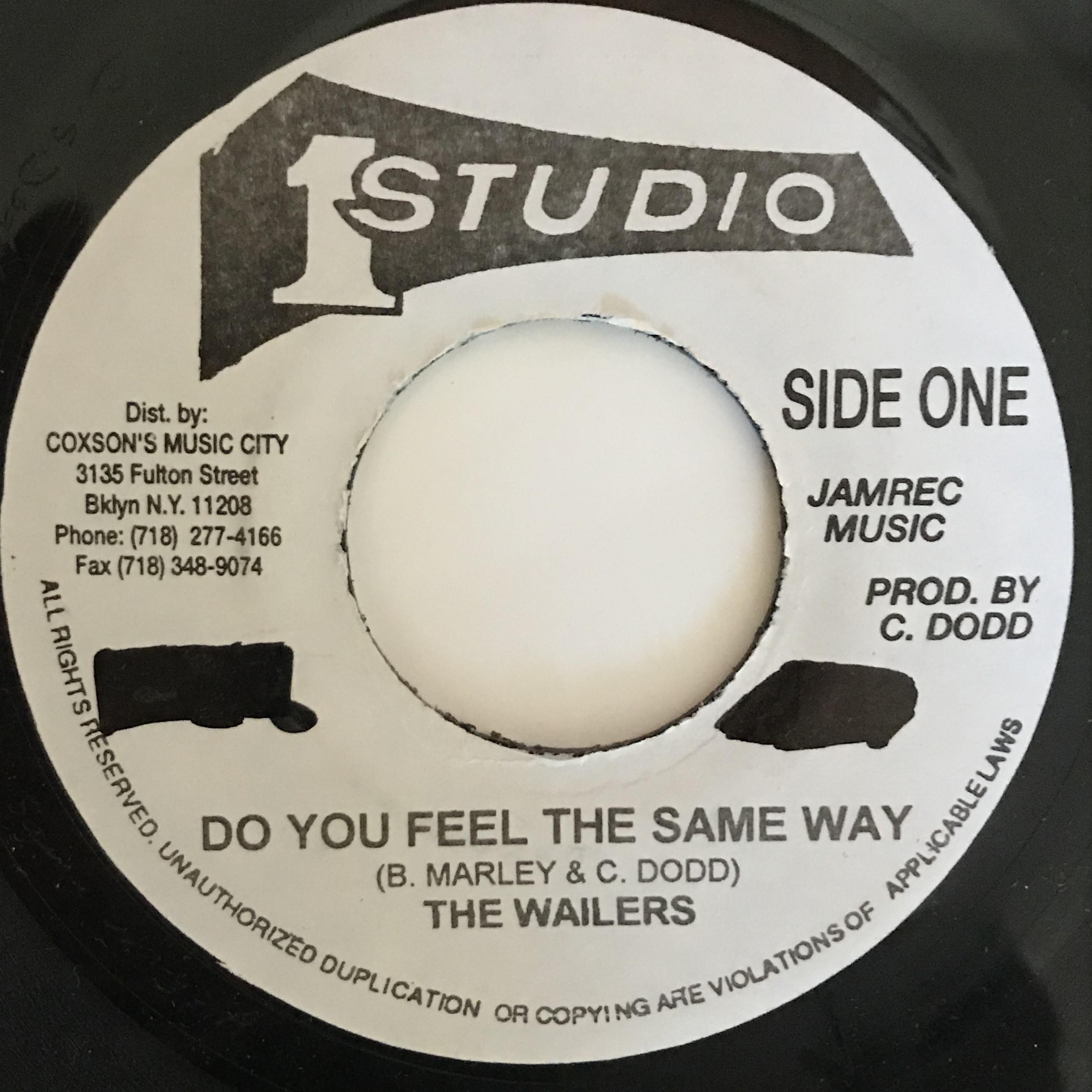 The Wailers - Do You Feel The Same Way - Destiny【7-10874】