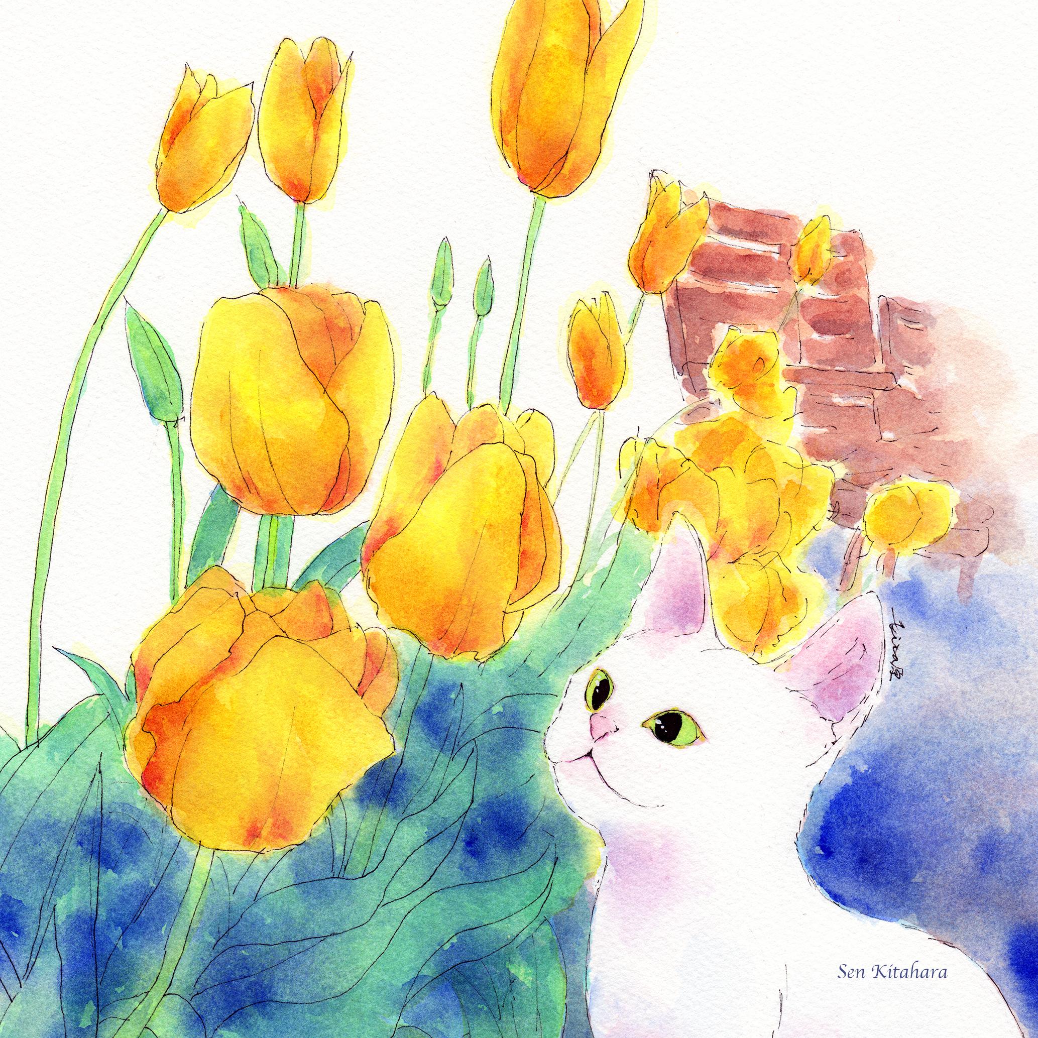 絵画 インテリア アートパネル 雑貨 壁掛け 置物 おしゃれ 水彩画 創作 猫 ネコ ねこ 動物 ロココロ 画家 : 北原 千 作品 : チューリップでお花見