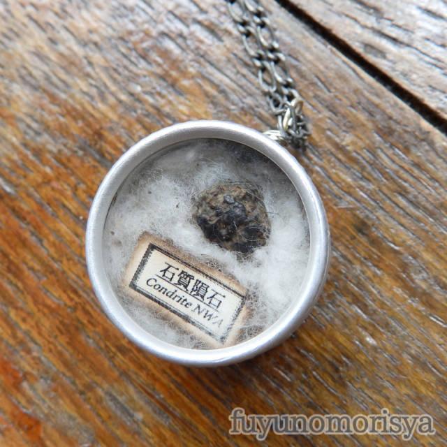 ネックレス - 標本缶 石質隕石 - フユノモリ社 - no19-fuy-18
