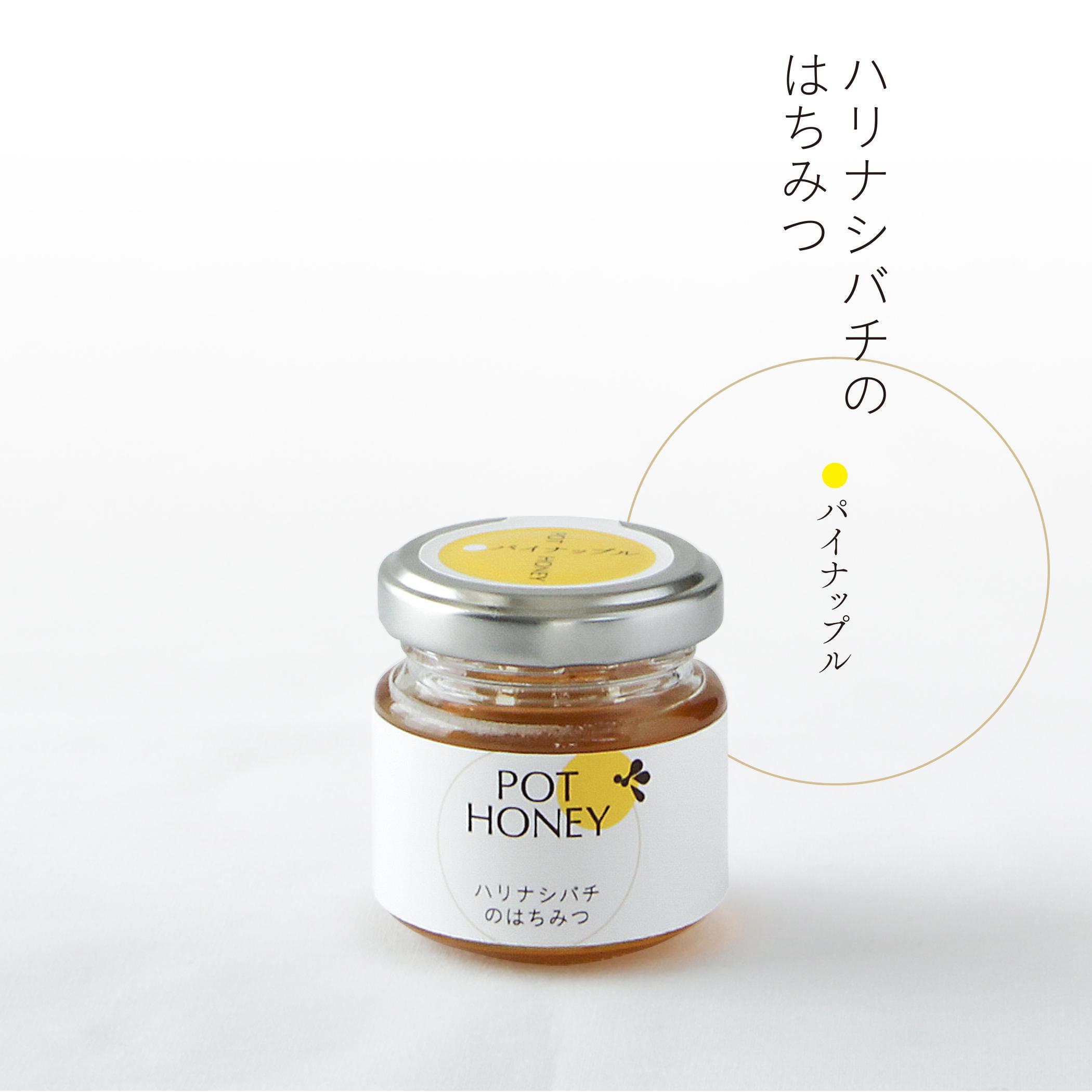 ハリナシバチの蜂蜜  POT HONEY パイナップル 40g
