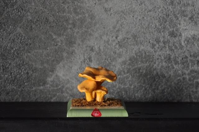 キノコ標本模型(Pfiffeling,Eierpilz)