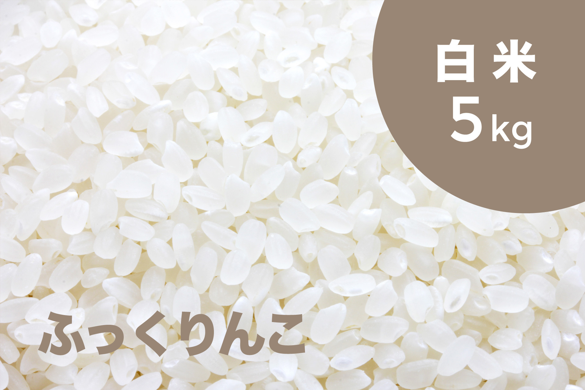 特別栽培米 ふっくりんこ(白米)5kg【令和2年産】