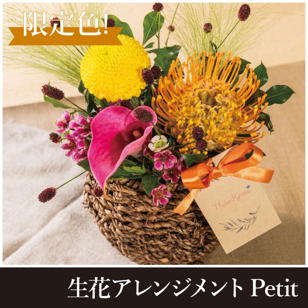 【敬老の日限定販売】生花アレンジメントpeti