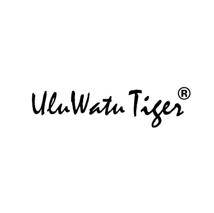 UluWatu Tiger 別注品 ブラック×シルバー 伊達メガネ  - 画像5