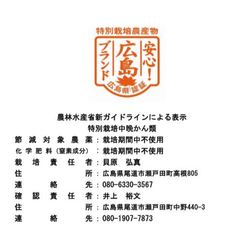 中晩柑詰め合わせセット(ご家庭用) 5kg箱