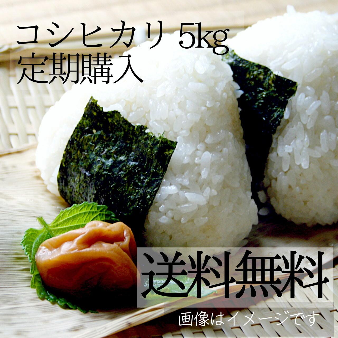 米 5kg(キロ) 新潟コシヒカリ【送料無料】【定期購入】 新潟米 精白米 阿賀野産 2020年 新米