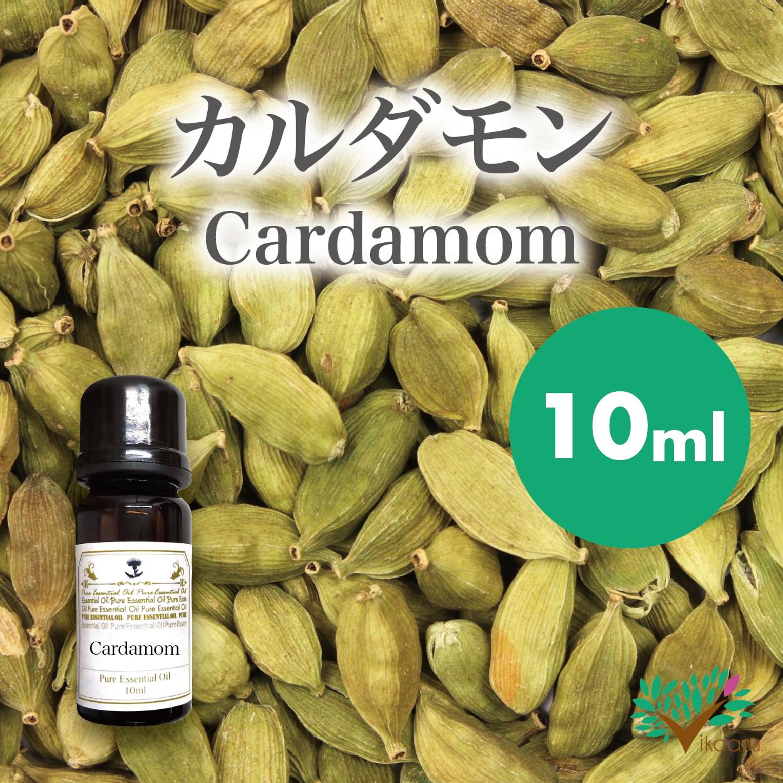 精油カルダモン10ml【英国直輸入】