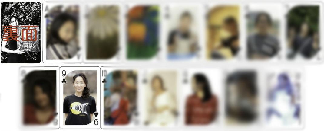 トレーディングカード(クローバー柄14枚)@143円