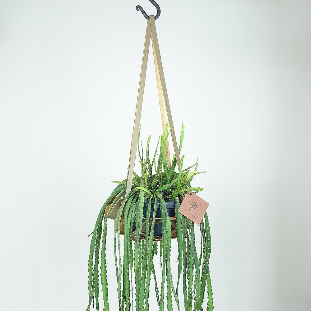 レザーハンギング(L) | Leather Hanging(L)
