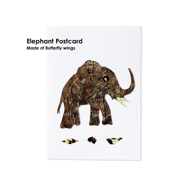 蝶の羽で作られたポストカード
