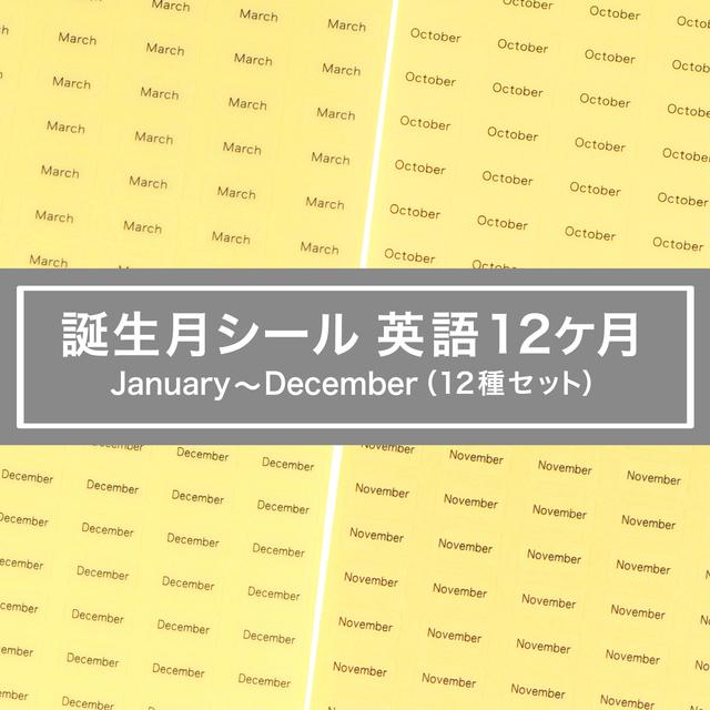 台紙用シール 誕生月12ヶ月セット 英語10×5mm 600枚 クリア